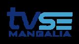 TV Sud-Est Mangalia Live