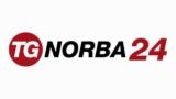 TG Norba 24 Live