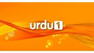 Urdu1 TV Live